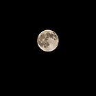 Full moon, September 23, 2010 by Steven David Johnson