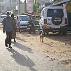 ruralscapes #153, early morn dusty street by stickelsimages