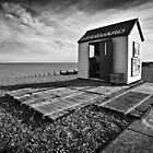 Lifeguard by Geoff Carpenter