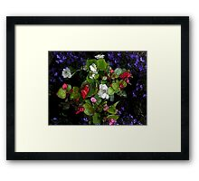 colourful flowers with comic effect Framed Print