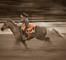 Barrel Racing at the North Texas State Fair & Rodeo 2012 by David Owens