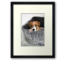 Bow in bed Framed Print