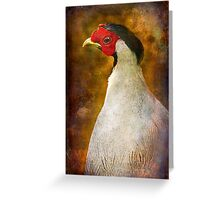 Finer Feathered Friends: Silver Pheasant Greeting Card