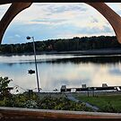 View through the gazebo window. by Sandra Lee Woods