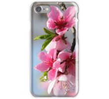 Peach Blossom iPhone case design iPhone Case/Skin