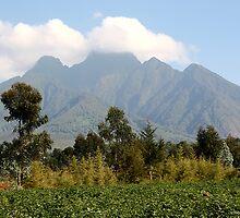 Mount Sabinyo, Kinigi, Volcanoes National Park Rwanda  by Carole-Anne
