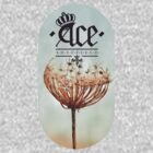Ace, Sheffield - Photo Print Tee #1 by Shane Rounce