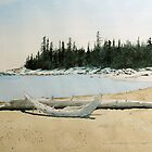 Spring Driftwood by Douglas Hunt