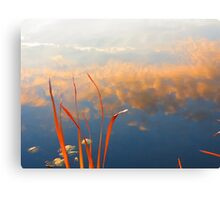 Reeds and Clouds Canvas Print