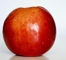 apple by mrivserg