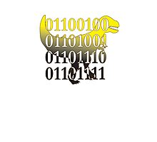 dino binary code t-rex design Photographic Print