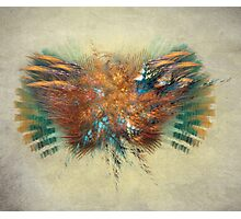 Fly fractal art Photographic Print
