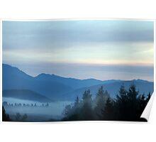 Misty Morning At Mt Rainier National Park Poster