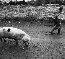 Piggy Back by Alexander Caminada