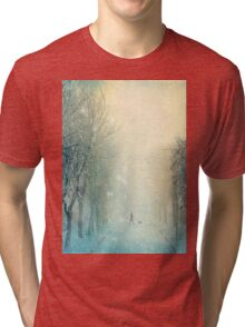 Evening Stroll Tri-blend T-Shirt