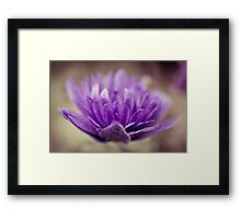 Flowerscapes - Purple Flower Framed Print