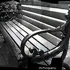 The Park Bench by Scott Mitchell