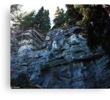 Neat Geology Canvas Print