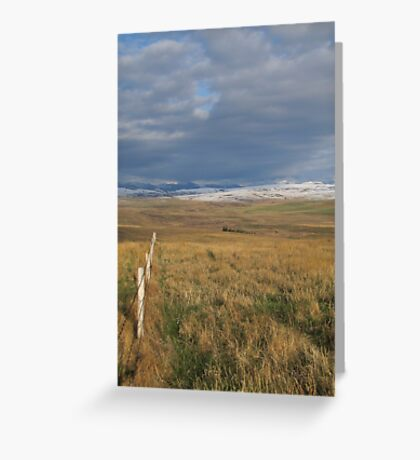 Follow the Fence Greeting Card