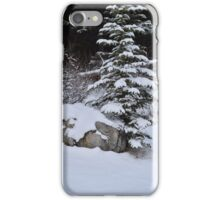 Wintery tree iPhone Case/Skin