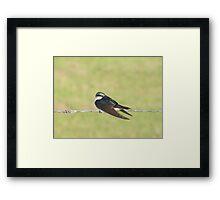 Bird on a Wire Framed Print