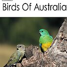 Birds Of Australia Calendar - Number 3 by Kerryn Ryan, Mosaic Avenues