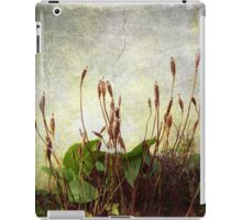 Wintry Weeds 1...........................Most Products iPad Case/Skin