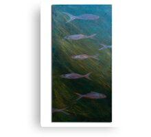 Aqua wildlife Canvas Print