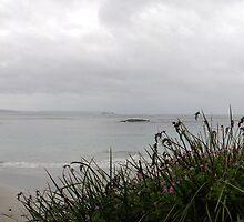 Cosy Corner, Albany. Western Australia by gcdepiazzi