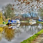 Garstang Canal by Darren Kitchen