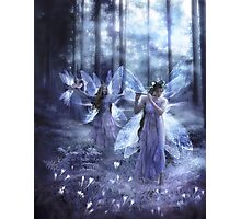 Night Fairy Song Photographic Print