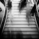 Travel BW - Paris Louvre Stairs by lesslinear