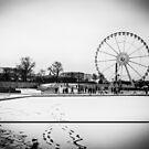 Travel BW - Paris Winter Garden by lesslinear