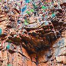 Australia - Outback I by lesslinear