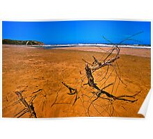Sandy Red Beach with Branch (HDR) Poster