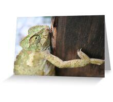 Tree Hugger - Chameleon Greeting Card
