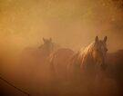 Runnin' Through The Dust by pmreed