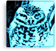 Ice Owl Canvas Print