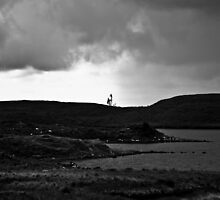 Ireland in Mono: Lonely Trees by Denise Abé
