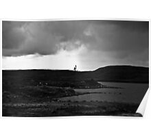 Ireland in Mono: Lonely Trees Poster