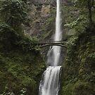 Multanulma Falls by Cynthia Broomfield
