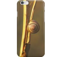 Snail on a twig iPhone Case/Skin