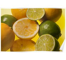 Lemon n Lime - study of fruit cross section Poster