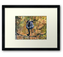 Worth His Weight in Gold Framed Print