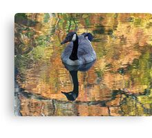Worth His Weight in Gold Canvas Print