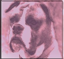 Sad Puppy by KittyMisty