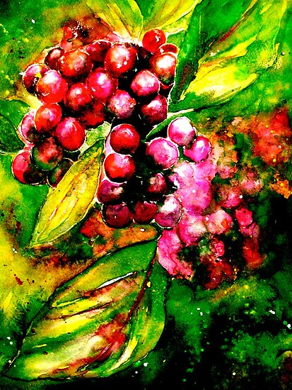 Autumn Berries... by © Janis Zroback