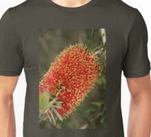 Calistemon- Red Bottle Brush flower Unisex T-Shirt