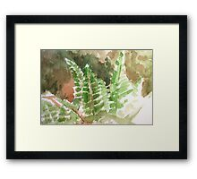 Fern Hands Framed Print