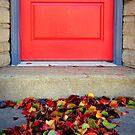 Leaves and Door by Susan S. Kline